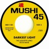 The Lafayette Afro Rock Band/Outlaw Blues Band / Darkest Light